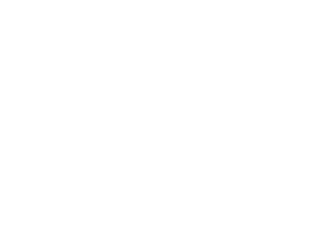 Life Marbled Duck